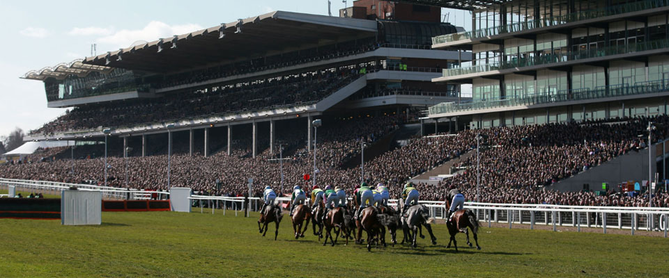 Cheltenham Race Week